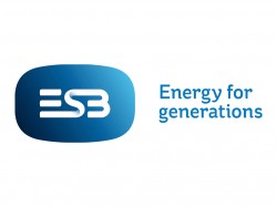 Electricity Supply Board (ESB)
